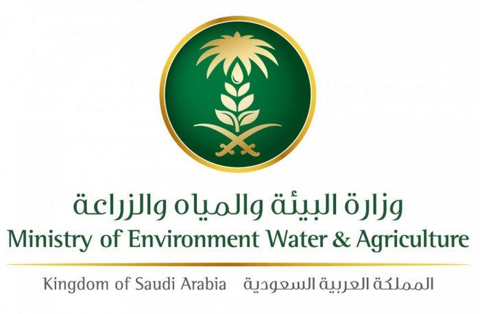 وزارة البيئة والمياه والزراعة تعلن فتح باب التسجيل في برنامج تدريبي للرجال والنساء