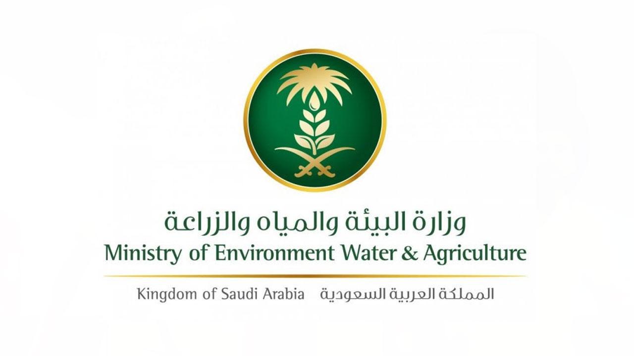 منها توفير فرص العمل.. 6 أهداف لبرنامج التنمية الريفية الزراعية المستدامة.. تعرَّف عليها