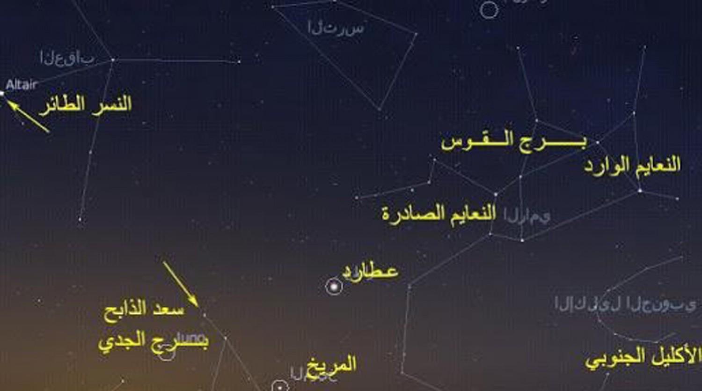 «الحصيني»:اليوم بداية موسم العقارب.. وهذه مدته وأبرز خصائصه المناخية
